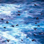 Stormo in volo sul mare Azzorre