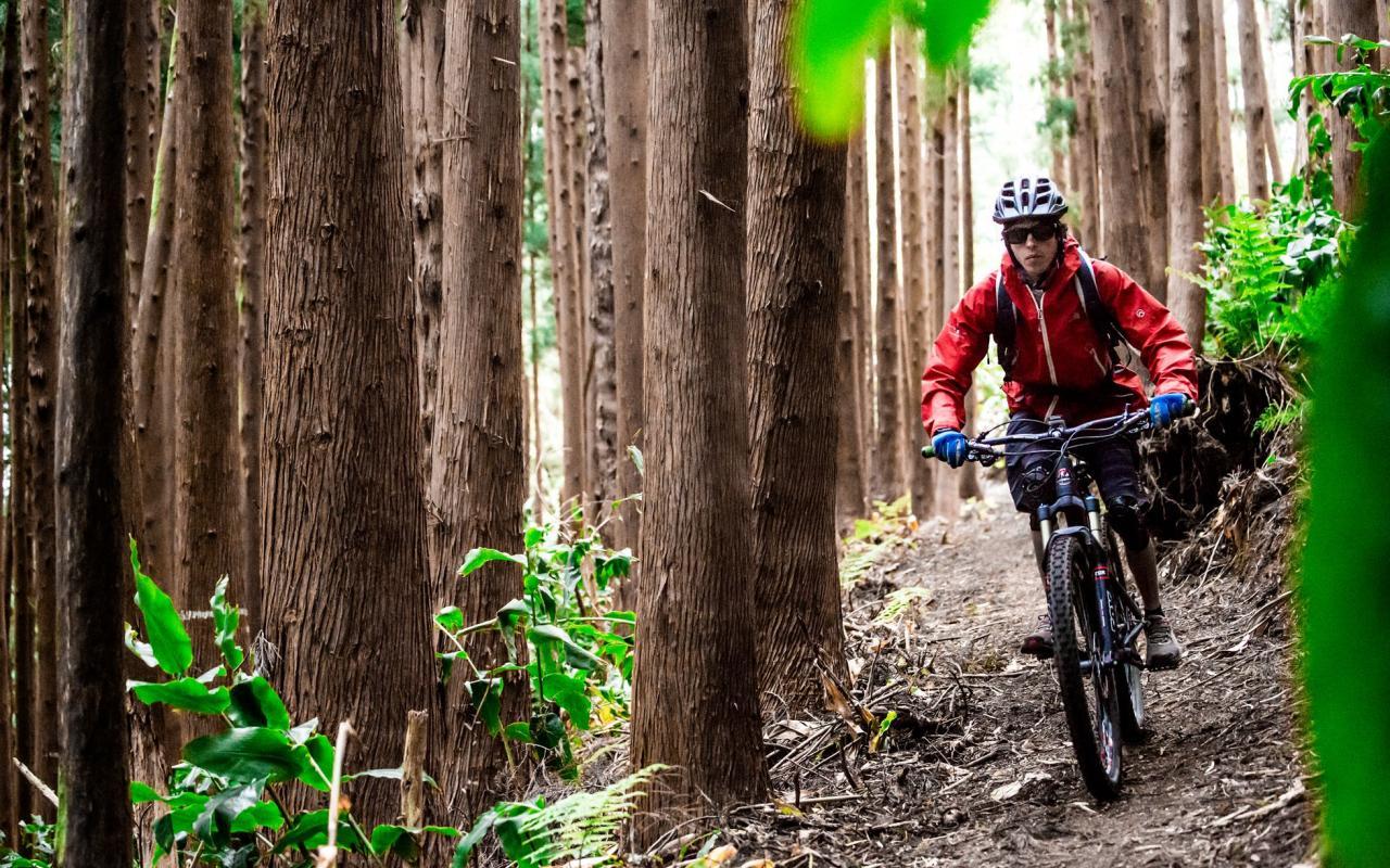 Vacanze in bicicletta cicloturismo faial norte Azzorre