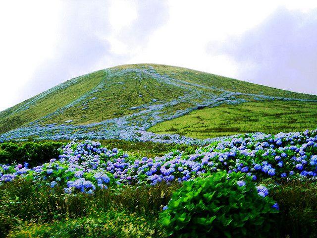 Faial, Azzorre - Natura