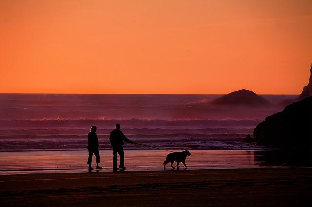 Al tramonto con il cane alle Azzorre