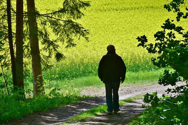 A passeggio nella natura delle Azzorre