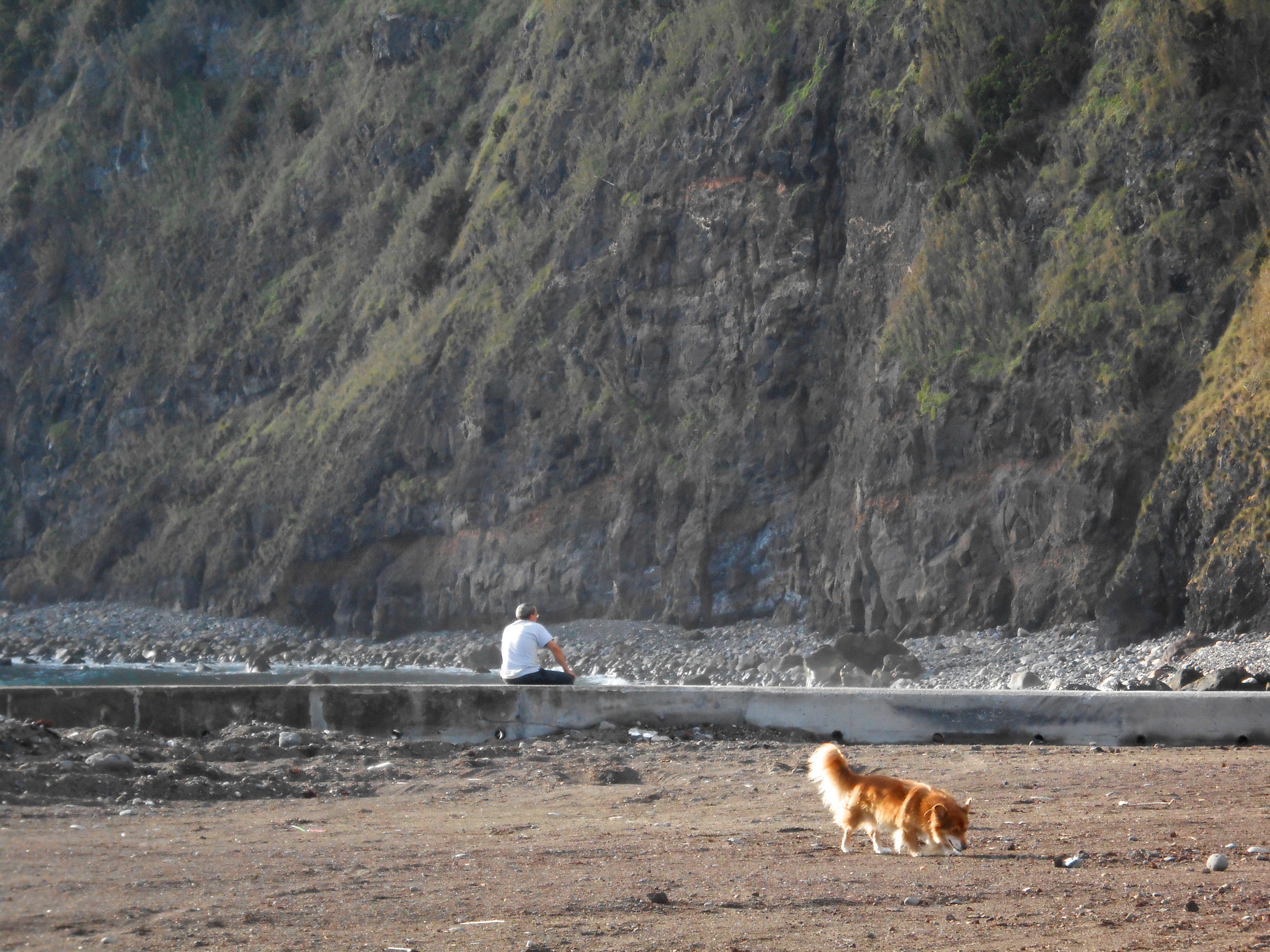 A passeggio col cane nella natura delle Azzorre