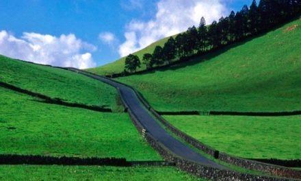 Strada verso il cielo – Terceira, Azzorre