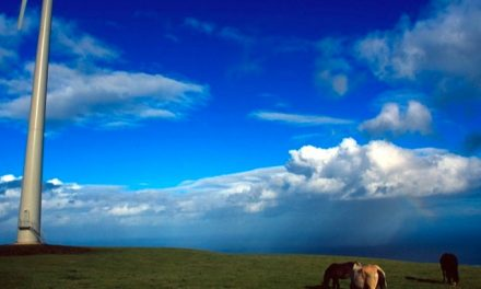 Cavalli e Pale a Vento a Terceira