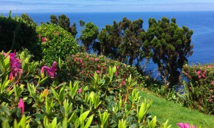 Giardini sull'Oceano, São Jorge – Azzorre